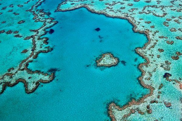 australia-cairns-gran-barrera-de-coral-295.jpg