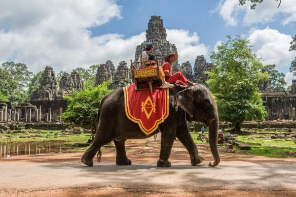 camboya-siem-reap-elefante-103.jpg