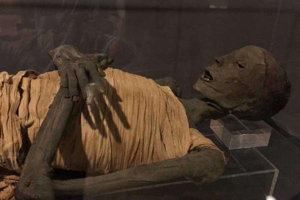 egipto-cairo-museo-egipcio-166.jpg