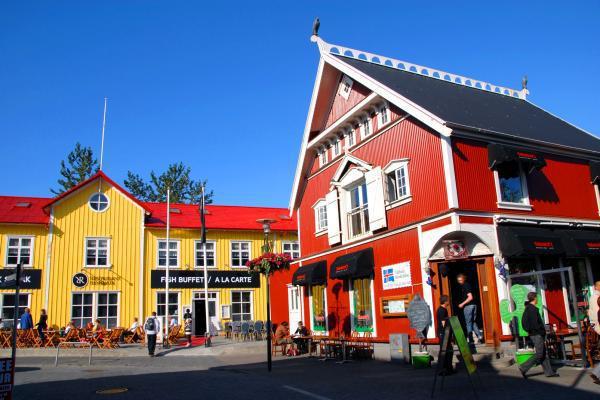 islandia-reykjavik-pueblo-266.jpg