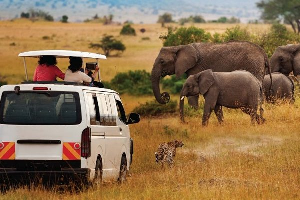 kenya-amboseli-parque-nacional-402.jpg
