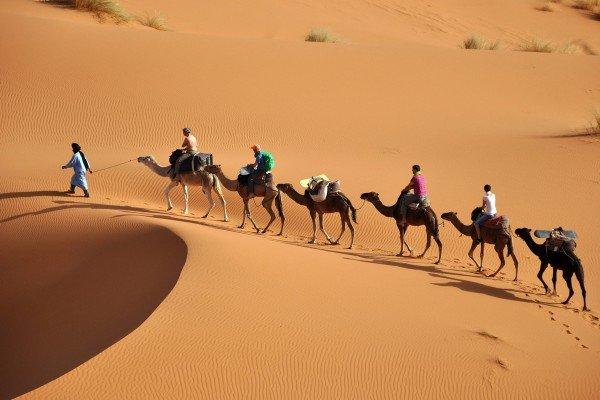 marruecos-merzouga-caravana-en-desierto-459.jpg