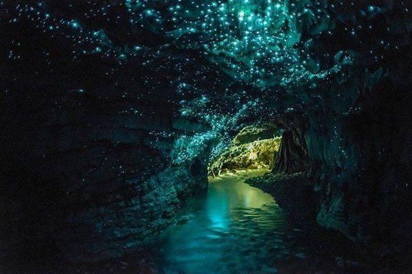 nueva-zelanda-waitomo-cuevas-de-waitomo-636.jpg