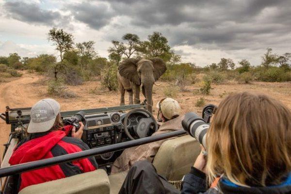 sudafrica-parque-kruger-safari-440.jpg