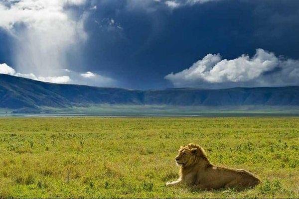 tazania-crater-de-ngorongoro-409.jpg
